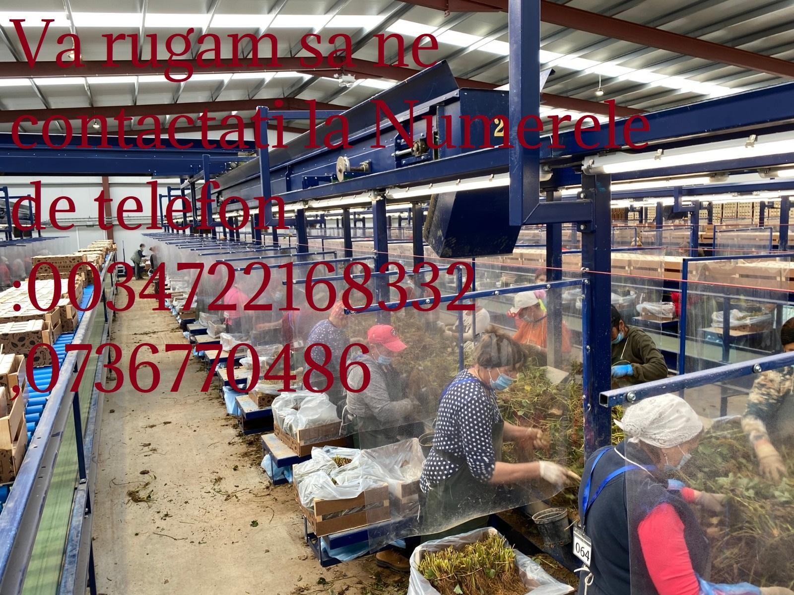 WhatsApp Image 2021-09-08 at 22.11.06